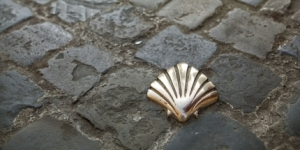 A_scallop_shell_guides_pilgrims_along_the_Way_of_St_James_14090MdzZWc