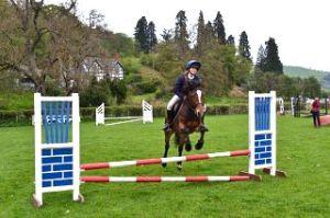 Horse & Rider _221